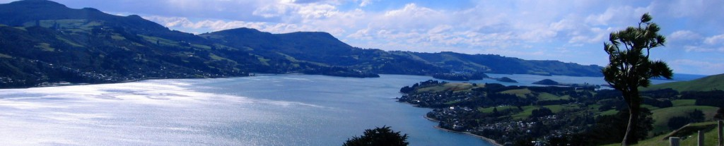 Otago Peninsula View